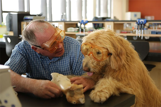 Photo of teacher Randy James and Hobbes the Goldendoodle, wearing safety goggles
