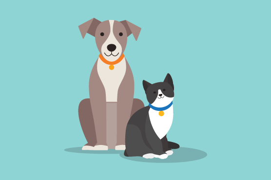 An illustration of a pet dog and cat.